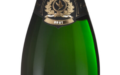 NEU – Riesling Winzersekt Traditionelle Flaschengärung